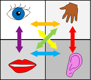 Four skills Quadrant with Sensory Images included