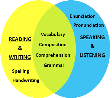Overlap of 4 Literacy Skills